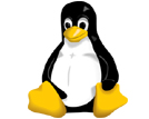 Linux Web Hosting in Dubai